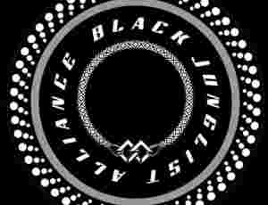Black Junglist Alliance Platform Launched To Support Black Creatives In The Scene